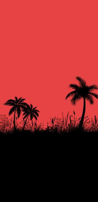 Обои на телефон пальмы, черные, темные, ночь, минимализм, красые, деревья, the red night