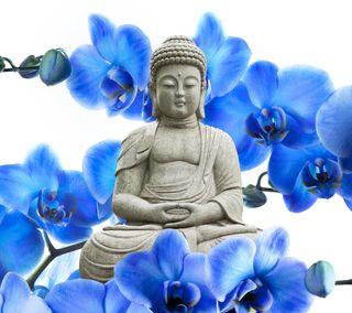 Обои на телефон орхидея, будда, цветы, прекрасные, orchid buddha