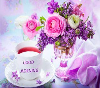 Обои на телефон водопад, цветы, утро, сад, приятные, природа, good  morning