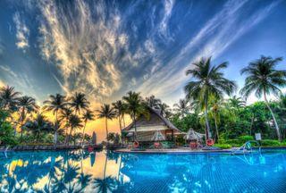 Обои на телефон пальмы, синие, природа, небо, зеленые, естественные, деревья, вода, 4k