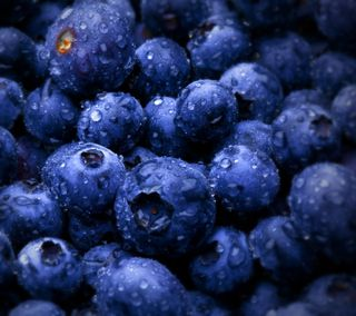 Обои на телефон фрукты, еда, blueberries