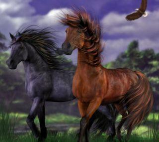Обои на телефон лошади, дикие
