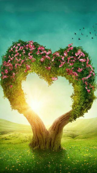 Обои на телефон птицы, цветы, формы, солнце, свет, природа, поле, любовь, дерево, love