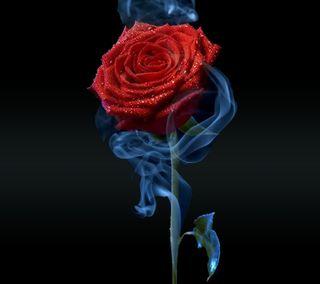 Обои на телефон art, абстрактные, крутые, красые, новый, дизайн, арт, цветы, розы, дым, лепестки