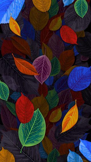 Обои на телефон падение, листья, красочные, дизайн