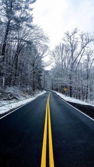 Обои на телефон холод, снег, сезон, природа, изгиб, зима, дорога, деревья