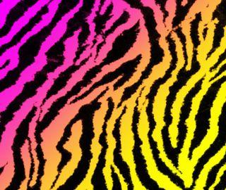 Обои на телефон градиент, розовые, полосы, зебра, животные, желтые, zebra gradient 1, foozma73