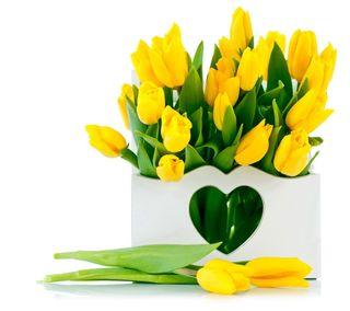 Обои на телефон тюльпаны, цветы, сердце, любовь, желтые, love
