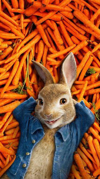 Обои на телефон анимация, фильмы, питер, кролики, кролик, животные, джинсы, peter rabbit, jacket, carrot