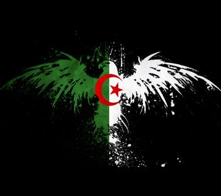 Обои на телефон флаг, алжир