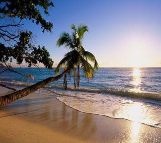 Обои на телефон love, sweet image, любовь, природа, прекрасные, пейзаж, милые, изображение
