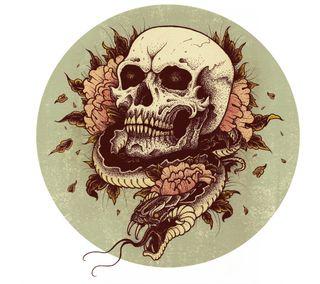 Обои на телефон змея, череп, цветы, луна, иллюстрации, дизайн