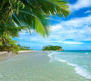 Обои на телефон тропические, природа, праздник, пляж, пейзаж, zedgerowsum