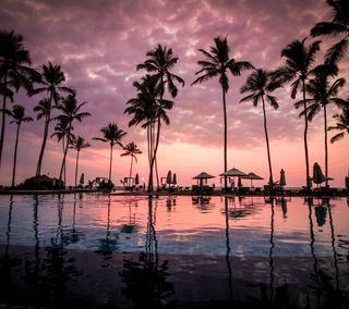 Обои на телефон рай, пляж, приятные, плавание, пальмы, отпуск, новый, закат, swimming pool, beach sunset