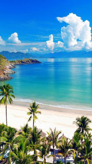Обои на телефон море, синие, прекрасные, пляж, океан, облака, лето, деревья