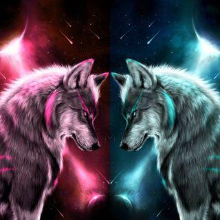 Обои на телефон одинокий, лицо, волк, face off