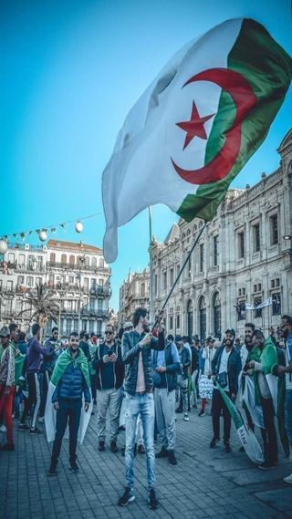 Обои на телефон честь, флаги, свобода, алжир