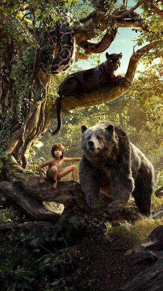 Обои на телефон джунгли, фильмы, постер, книга, jungle book, 2016