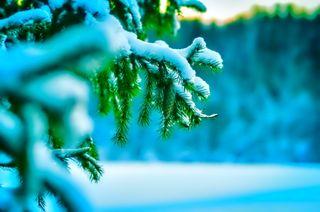 Обои на телефон фотографии, снежные, лед
