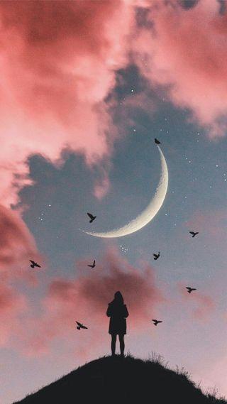 Обои на телефон crescent, lonely night, розовые, небо, ночь, девушки, луна, облака, фантазия, птицы, одинокий, свобода, холм