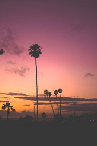 Обои на телефон темные, пляж, пальмы, небо, красочные, закат, дорога, деревья, город, oc