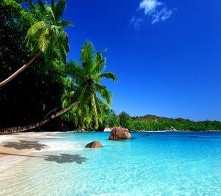 Обои на телефон тропические, рай