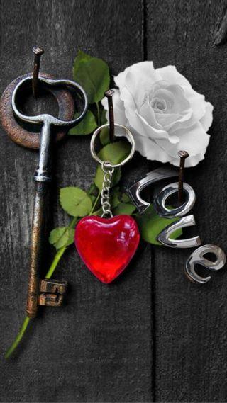 Обои на телефон ключ, черные, сердце, розы, любовь, красые, дерево, белые, love, black wood