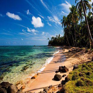Обои на телефон тропические, взгляд, приятные, прекрасные, пляж, море, милые, tropical beach sea
