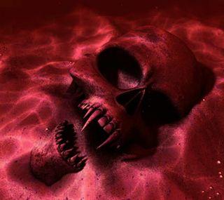 Обои на телефон голова, череп, подводные, море, красые, кость, вода