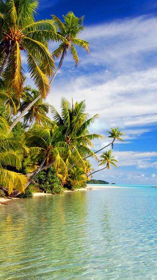 Обои на телефон релакс, пляж, пальмы, новый, море, лучшие, pal, druffix