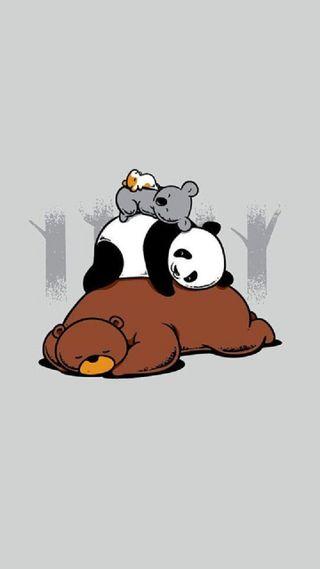 Обои на телефон медведи, животные