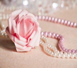 Обои на телефон розы, розовые, жемчуг, pink rose and pearls, pink rose and