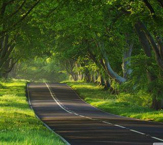 Обои на телефон настроение, природа, красота, ездить, дорога, mood to drive