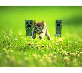 Обои на телефон майнкрафт, коты, creepers and cats
