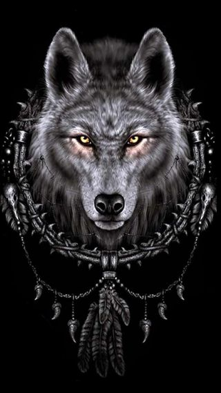 Обои на телефон ловец снов, волк