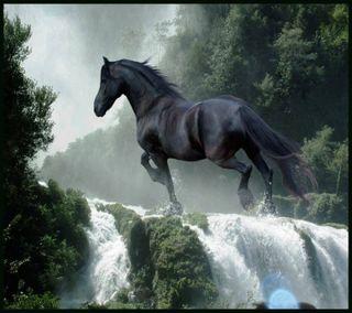 Обои на телефон лошадь, темные
