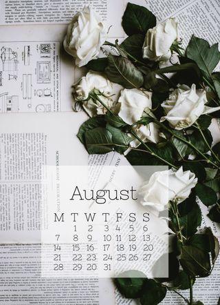 Обои на телефон календарь, розы, белые, август, white roses, aug