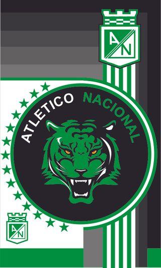 Обои на телефон колумбия, футбол, зеленые, atltico nacional, atletico nacional 6