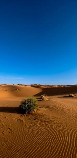 Обои на телефон пустыня, песок