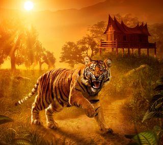 Обои на телефон хищник, тигр, страшные, закат, животные, дикие
