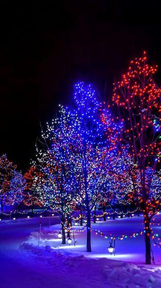 Обои на телефон праздник, рождество, огни, ночь, деревья