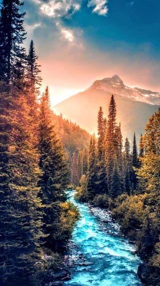 Обои на телефон пейзаж, осень, лес