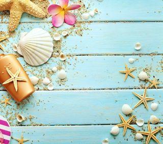 Обои на телефон ракушки, песок, морской, морская звезда, лето, дерево, plumeria