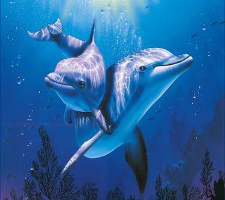 Обои на телефон подводные, underwater  delfine, delfine