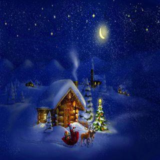 Обои на телефон взгляд, рождество, приятные, прекрасные, милые, christmas eve