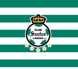 Обои на телефон мексика, футбольные, футбол, torreon, santoslaguna, santos laguna