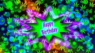 Обои на телефон высокий, фиолетовые, счастливые, листья, зеленые, день рождения, hippie, happy, 420