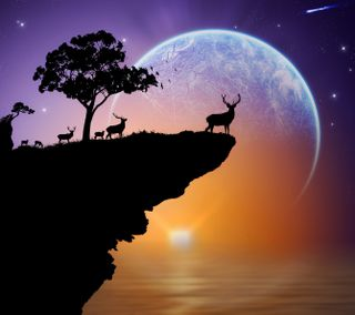 Обои на телефон силуэт, рок, олень, небо, море, звезды, закат, дерево