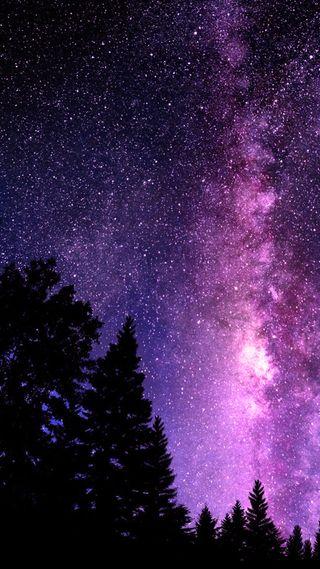 Обои на телефон туманность, черные, фиолетовые, ночь, небо, лес, звезды, галактика, galaxy
