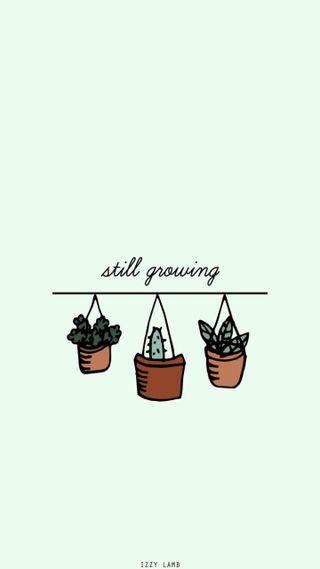 Обои на телефон растения, эстетические, милые, growing